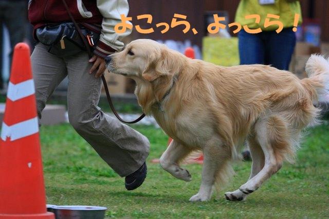 10運動会5.JPG