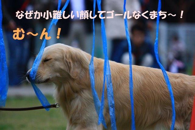 12運動会7.JPG