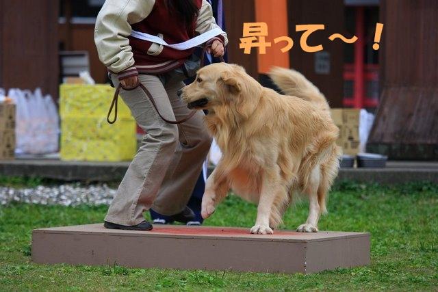 20運動会15.JPG