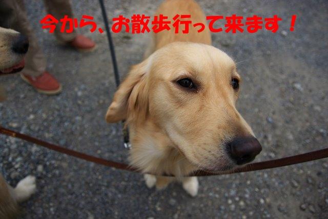 01愛ちゃんち