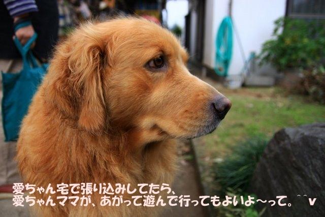 07愛ちゃんち