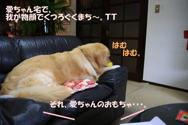 09愛ちゃんち