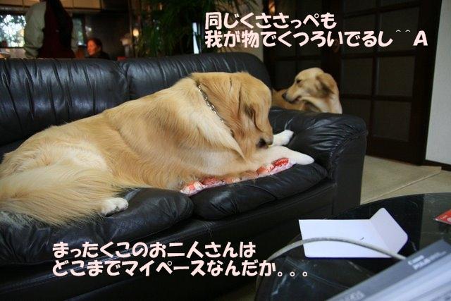 10愛ちゃんち