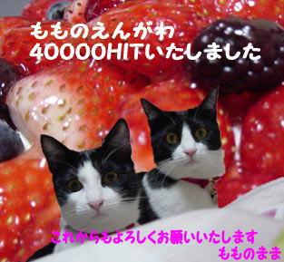 40000