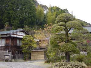 kanayagaisou