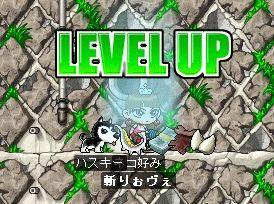 LVUP103.jpg