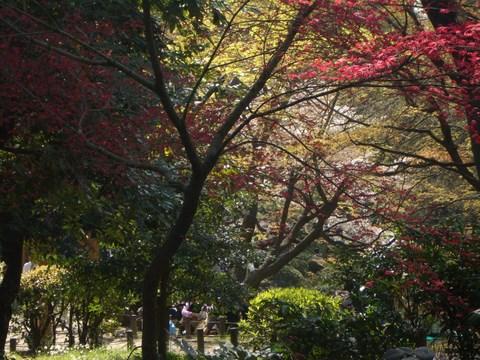 日比谷公園2