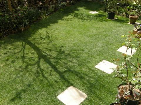 今年最初の芝刈り後の庭