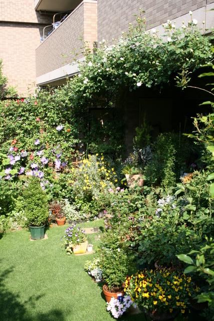 2009/4/30の庭の様子