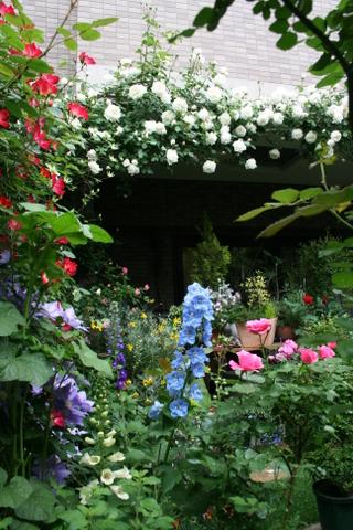 バラ花壇からテラス方向