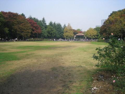 日比谷公園2009/11/10 2