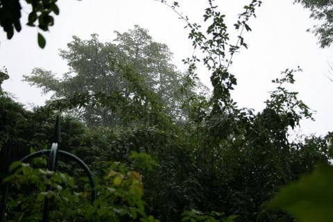 土砂降り2