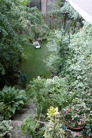 階段から見下ろした芝庭2