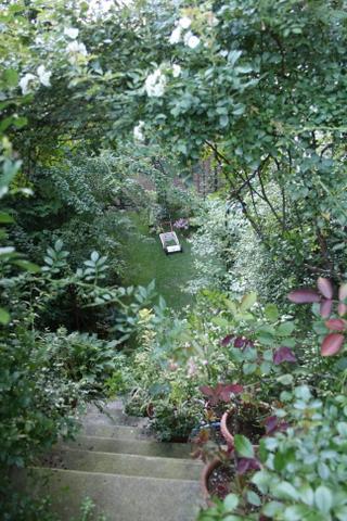 階段から見下ろした芝庭4