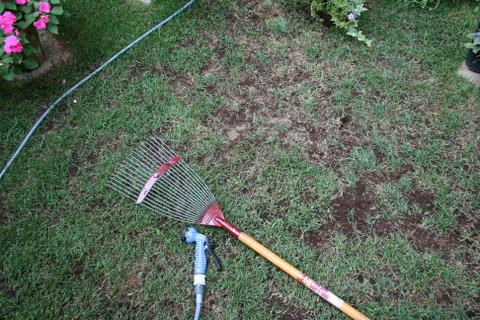 堆肥散布2