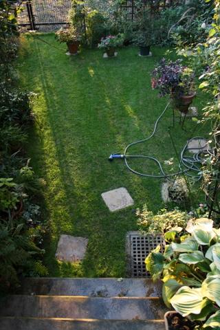 芝庭の様子 2009/10/18