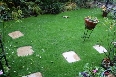 芝庭への落ち葉