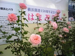 横浜フラワーフェスティバル2