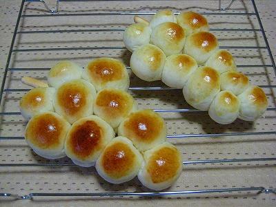 生ぶどうパン1
