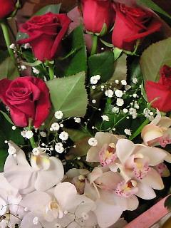 200904071647000花束