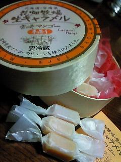 200905032015000宮崎土産
