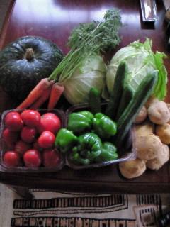 200907291503000ミッチー野菜