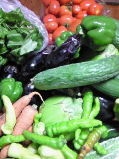 200907311945000えっちゃん野菜