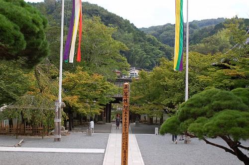 DSC_8239修善寺4