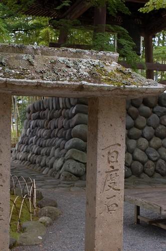 DSC_8244修善寺7