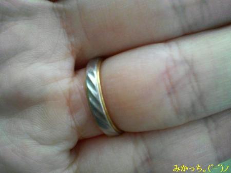 P1060006s2006.6.10.jpg