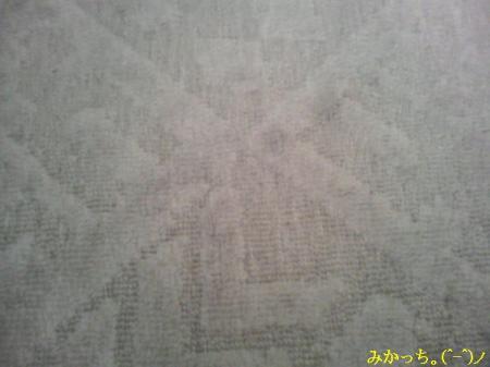 P1060025s2006.6.8.jpg