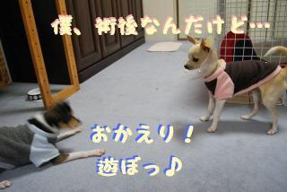 DSC_2558.jpg