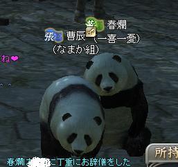 曹さんパンダ