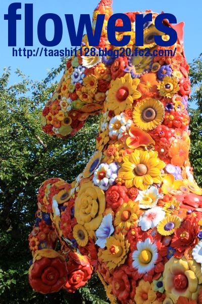 flowers0908.jpg