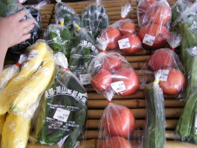 朝採れたての野菜
