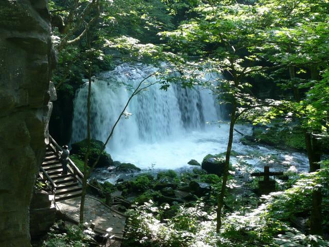 奥入瀬渓谷3
