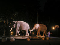 Bali-Adventure-night-002.jpg
