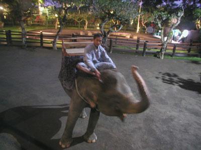 Bali-Adventure-night-003.jpg