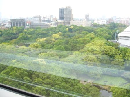 okokokoko