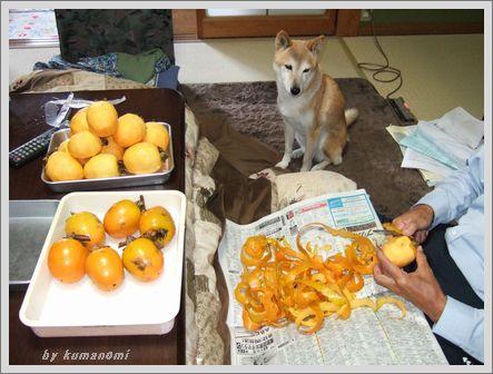 柿チョーダイ
