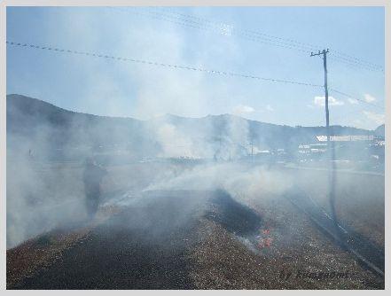 2009土手焼き