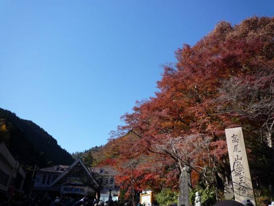紅葉の高尾山♪