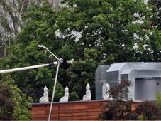 buddhas-auf-dem-dach-10241309-qf,templateId=renderScaled,property=Bild,width=227
