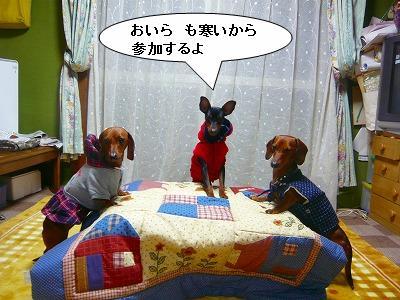 201101さむ (3)