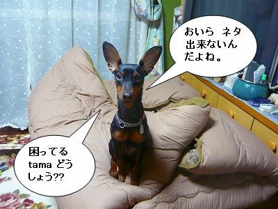 21.02.06ネタ切れ (2)