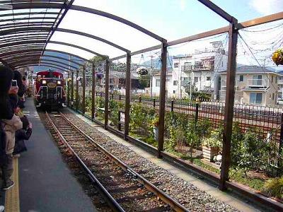 2143トロッコ電車 (2)