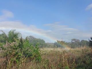 滝の恩恵で、虹。