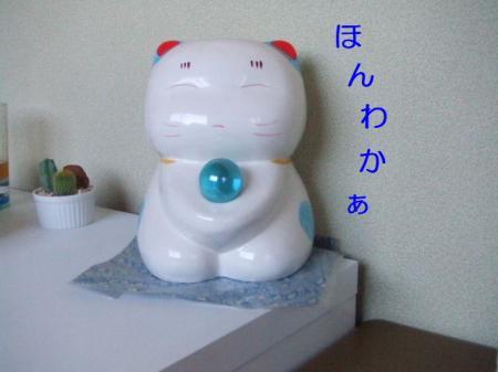 DSCF70081.jpg
