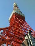 東京タワー081212.JPG