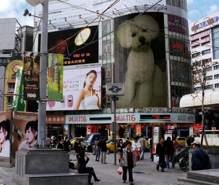 PhotoFunia-d3f55.jpg